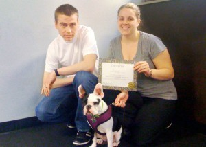 beacon hill dog training, beacon hill dog training obedience classes, beacon hill classes, classes beacon hill, beacon hill puppy training, beacon hill puppy play, beacon hill puppy socialization, beacon hill puppy training classes, puppy classes white center, white center puppy kindergarten, seattle puppy kindergarten, puppy kindergarden seattle, white center dog training, white center puppy training, puppy training, puppy play, puppy classes, white center dog training, white center classes, white center dog obedience classes