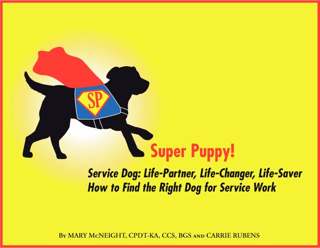 Teach Your Dog To Be A Service Dog