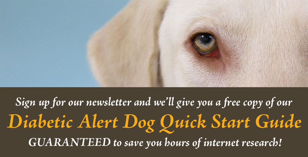 Resources For Training A Medical Alert Dog For Pots Dysautonomia
